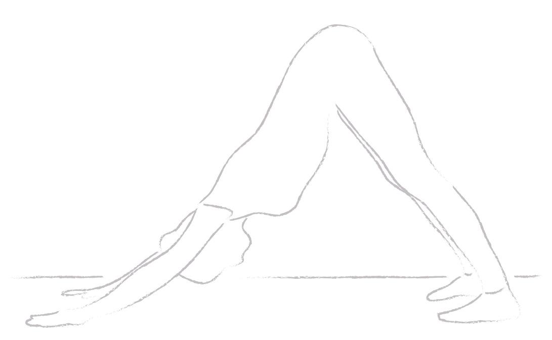 Yogajanam downward dog