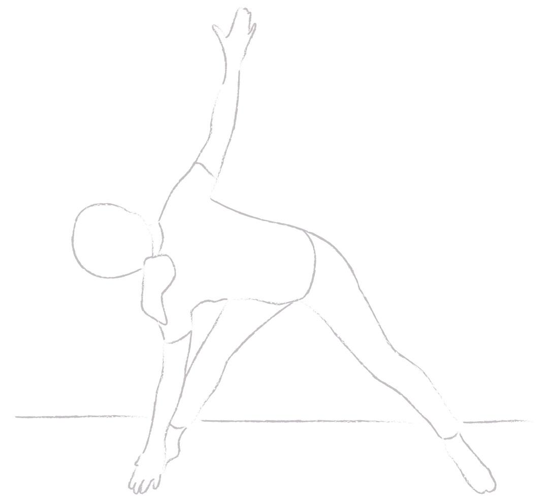 Yogajanam triangle